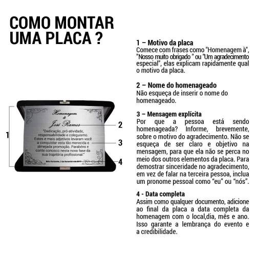 PLACA DE HOMENAGEM AÇO INOX ESCOVADO 18x14 CM COM ESTOJO